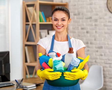 Frau hält Korb mit Reinigungsmitteln