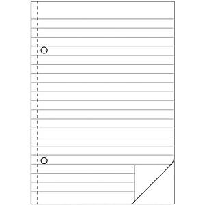 AVERY Zweckform Formularbuch 904 Durchschreibebuch